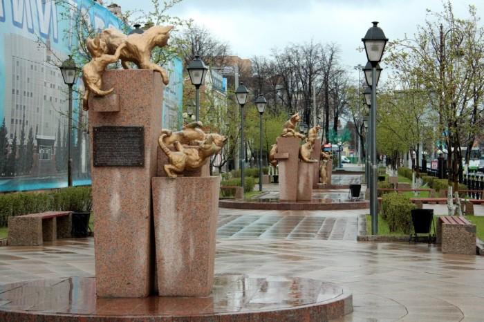 Сквер сибирских кошек. / Фото: www.fishki.net